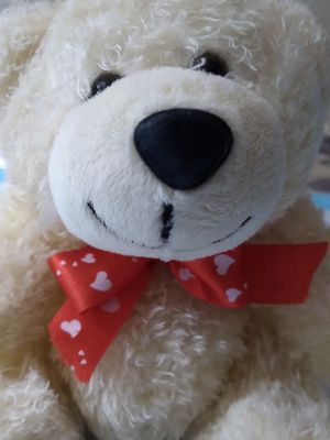 Valentines Teddy Bear for Sale in The Bronx, NY