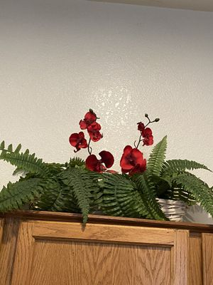 Silk plant, home decor for Sale in Phoenix, AZ