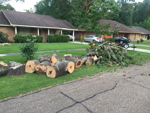 Free Firewood for Sale in Baton Rouge, LA