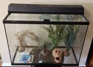 38 gallon aquarium with all accessories for Sale in Lakeside, CA