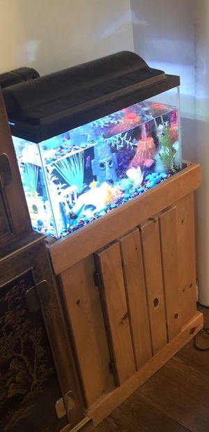10 Gallon Fish Tank for Sale in Baltimore, MD
