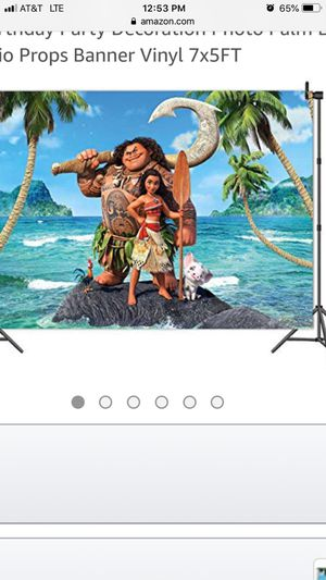 Moana Themed Birthday Party for Sale in Miami, FL