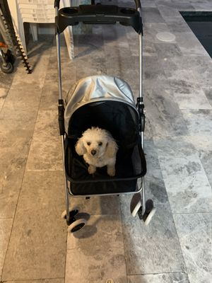 Doggy stroller for Sale in Miami, FL