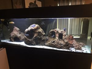 Aquarium fishtank 120g for Sale in Menifee, CA