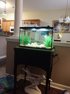 10 gal fish tank for Sale in Lexington, KY