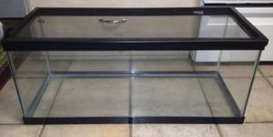 Reptile tank with accessories for Sale in Tampa, FL