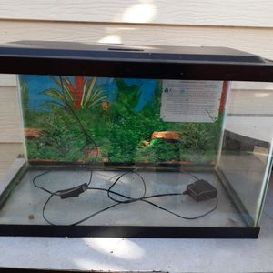 10 Gallon Fish Tank With Leds for Sale in Paramount, CA