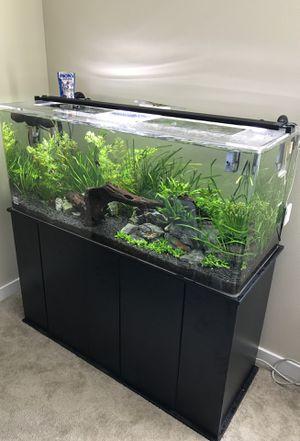 75 gallon aquarium setup for Sale in Renton, WA