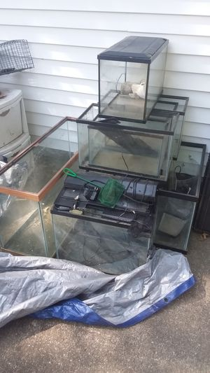 Multiple fish tanks for Sale in Evansville, IN