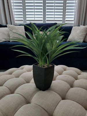 Potted Artificial Plant for Sale in Fontana, CA