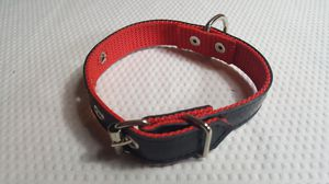 Tire Dog Collar ....Size sm for Sale in Mead, WA