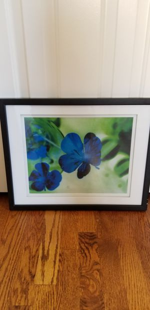 Framed Flower photos for Sale in Rockville, MD