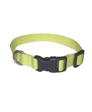 basic signature weave dog collar- neon S boots & barkley for Sale in El Monte, CA