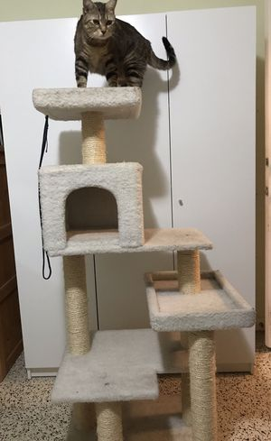 Cat tree and scratcher for Sale in Miami, FL
