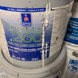 "5gal Sherwin Williams ProMar200 Egshel ""Greek Villa"" for Sale in Maple Valley,  WA"