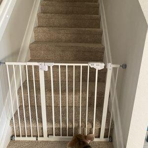 30 Inch Dog Gate for Sale in Miami, FL