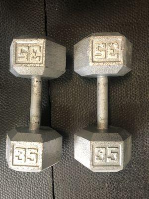 35 LB dumbbells for Sale in Tampa, FL