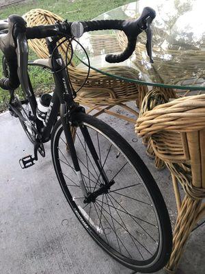 Trek Domane AL 2 road bike 54 cm for Sale in NEW PRT RCHY, FL