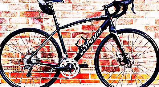 FREE bike sport