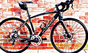 FREE bike sport for Sale in Wellington, KS
