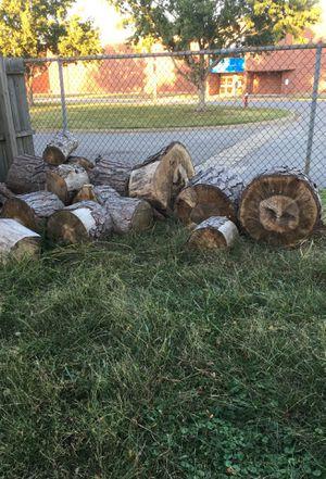 Big logs ready to be split for Sale in Virginia Beach, VA