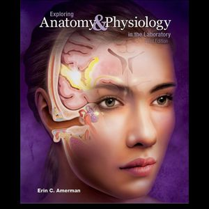 Exploring Anatomy & Physiology in the Laboratory 3rd Edition 3e by Amerman 9781617316203 eBook PDF Free instant Delivery for Sale in Pomona, CA