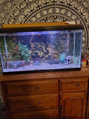 40 gal aquarium for Sale in Stafford Township, NJ