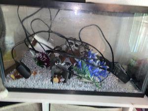 20 Gallon Aquarium with Supplies for Sale in Everett, WA