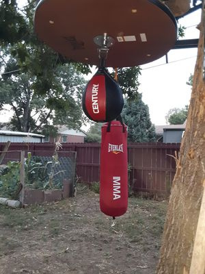 Heavey bag and speed bag for Sale in Denver, CO