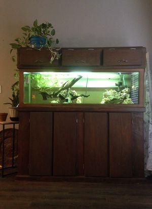 120 gallon fish tank for Sale in Dallas, TX
