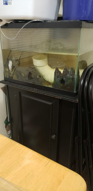 20 to 29 gallon fish tank and stand and other stuff for Sale in Corvallis, OR