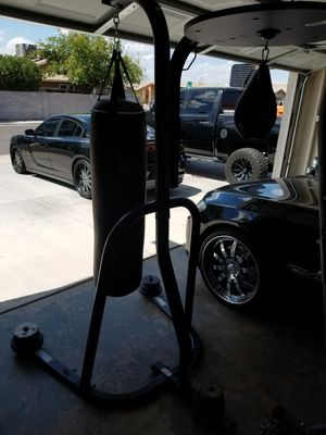 Everlast punching bag/speed bag for Sale in Mesa, AZ