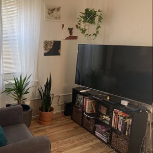 Tv Stand / Shelf Boookcase for Sale in Medford, MA