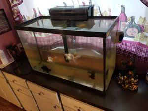 29gal aquarium with filter for Sale in St. Petersburg, FL
