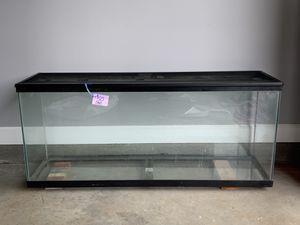 Reptile tank for Sale in Clarksville, TN