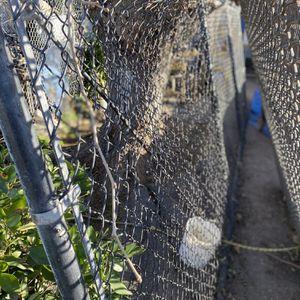 20 ' Gate for Sale in Stockton, CA