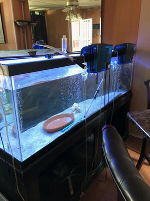 150 fish tank with stand and light for Sale in Philadelphia, PA