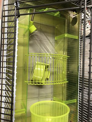 Hamster cage for Sale in Salunga-Landisville, PA