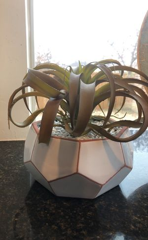 New Fake plant in ceramic pot for Sale in Garland, TX
