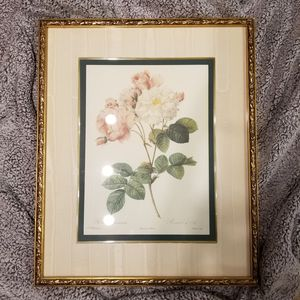 """The Rose"" and ""Rosa Damascena"" by Pierre-Joseph Redoute Reproductions in Gold Wood Frames for Sale in Irvine, CA"