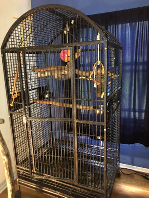 Good shape 40x30x70 bird cage for sale $450 obo for Sale in St. Louis, MO