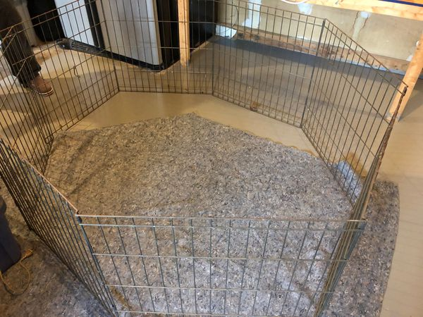 Five ft collapsible dog or animal fence