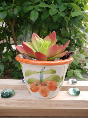 Ceramic plant pots, hand made painted for Sale in Moreno Valley, CA