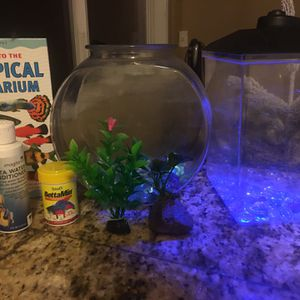 Beta Fish Essentials! for Sale in Vancouver, WA