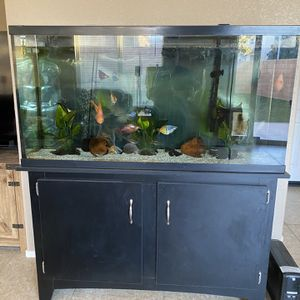 60 Gal Aquarium And Stand for Sale in San Jacinto, CA