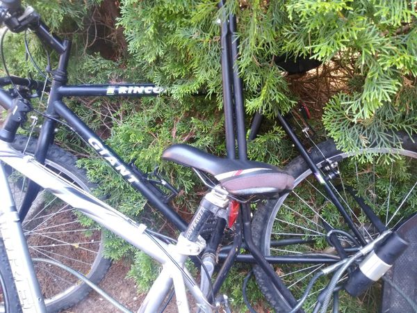"""Trek """"Alpha"""" SuperLight 24 speed. Mixmatched 700 wheelset/ tires. #2. Giant Rincon on 26 wheels. Could use a tuneupF"""