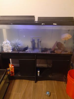 Fish tank for Sale in Jurupa Valley, CA
