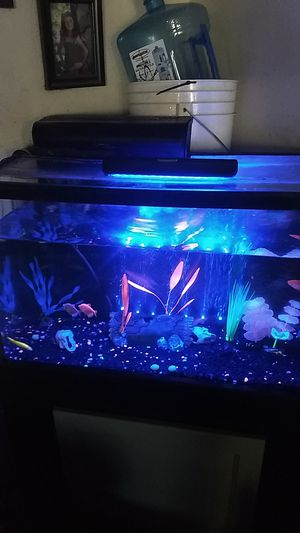 30 gallon GloFish tank stand and pump plus bubbler filter or trade for RC electric running marineland filter heater for Sale in Baldwin Park, CA
