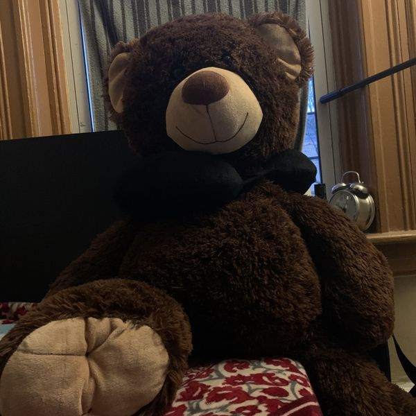 Big Ass Teddy Bear
