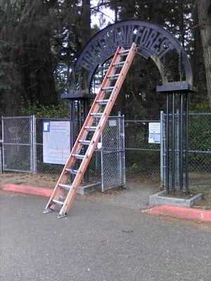 Werner fiberglass ladder 24' for Sale in Spanaway, WA